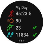 garmin quatix 5 marine smartwatch day stats